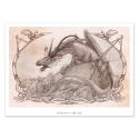 Dragon - Dibujo