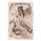 Cisnes - Dibujo