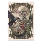 Skeleton - Colour