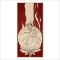 Lotus - Dibujo