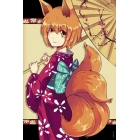 Poster Fox