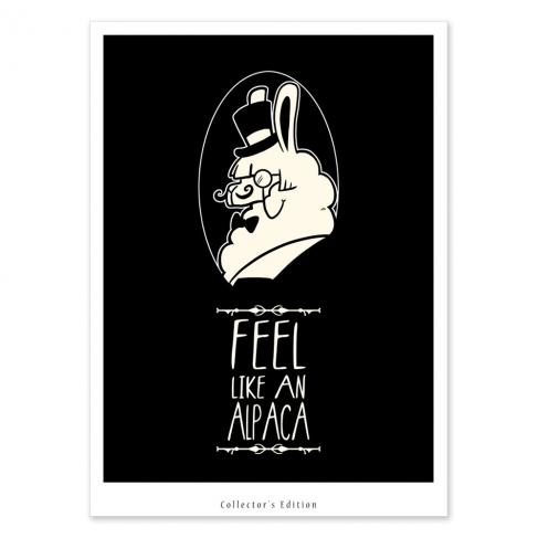 Feel like an alpaca