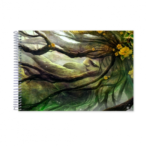 Forest (Notebook)