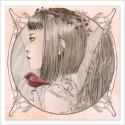 Birdie - Dibujo