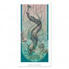 Sirena - Colour