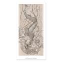 Sirena - Dibujo