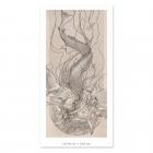 Sirena - Drawing