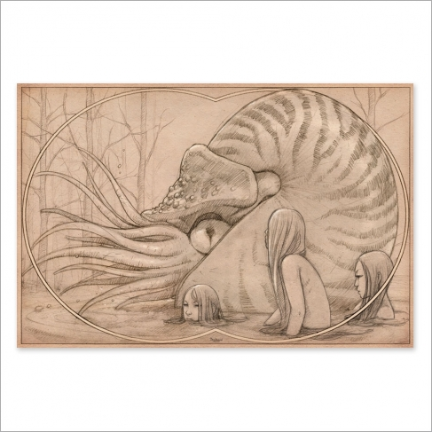 Nautilus creatures from the deep sea drawing (Poster)