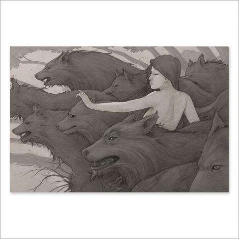 Lobos - Dibujo