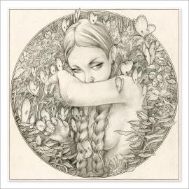 Mariposas - Dibujo
