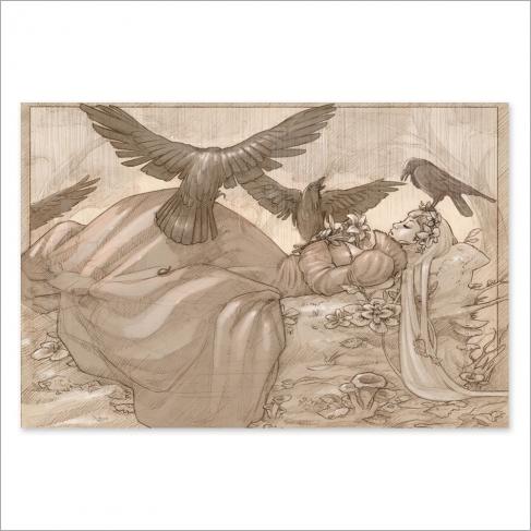Sleeping beauty, pencil draw (Poster)