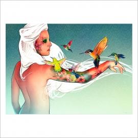 Hummingbird (Poster)