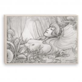 Carnivore - pencil drawing (Canvas)