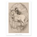 Unicornio - Dibujo