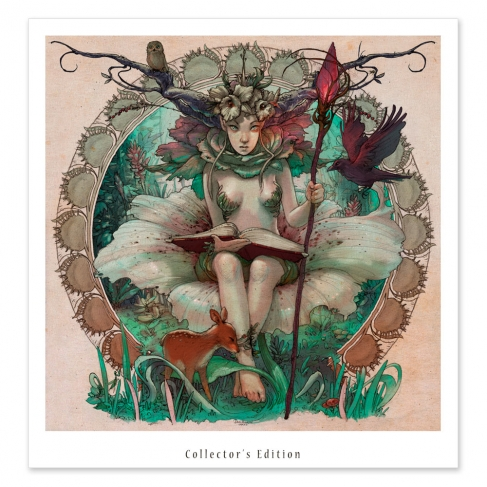Espíritu del bosque - Colour