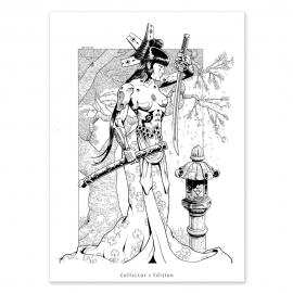 Geisha Andrómata