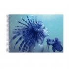 Scorpion girl pen (Notebook)