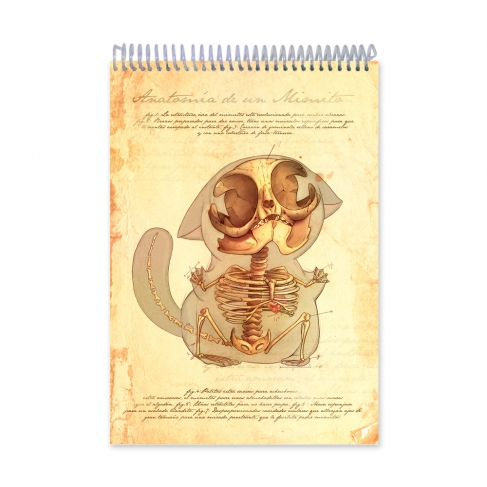 Anatomy Cuddle (Notebook)