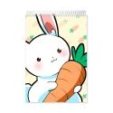 Carrot (Notebook)