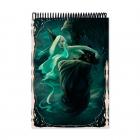 Alada colour (Notebook)