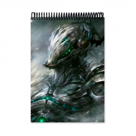 Steel skin (Notebook)
